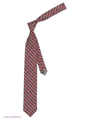 Галстук Alex DANDY. Цвет: темно-красный, темно-серый, серый