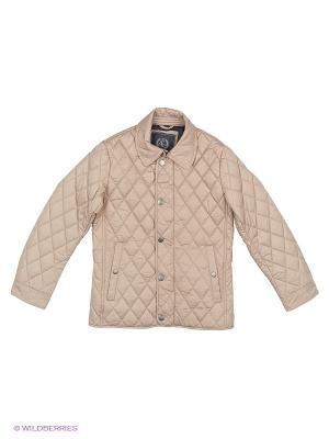 Куртка SILVER SPOON. Цвет: бежевый