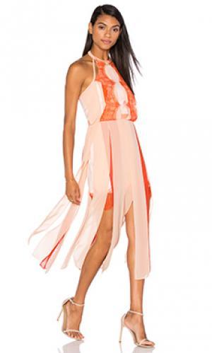 Платье sacred Three Floor. Цвет: оранжевый