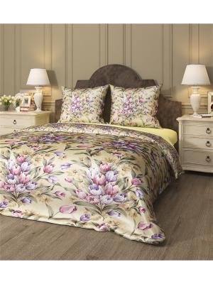 Комплект постельного белья Нежные тюльпаны, семейный Сирень. Цвет: фиолетовый, бежевый, розовый