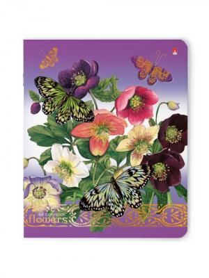 Тетрадь 96л. цветы и бабочки 5 видов Альт. Цвет: фиолетовый