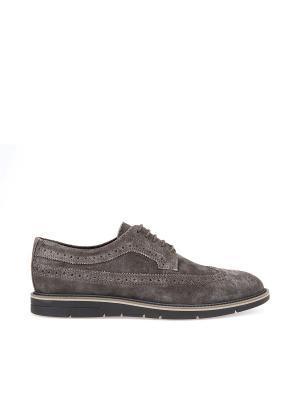 Туфли GEOX. Цвет: серо-коричневый