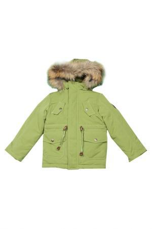 Куртка-парка Arctic Goose. Цвет: citron