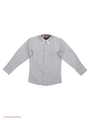 Рубашки Alex DANDY. Цвет: серый