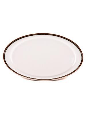 Блюдо овальное 17,50*32 см Кассие Royal Porcelain. Цвет: белый