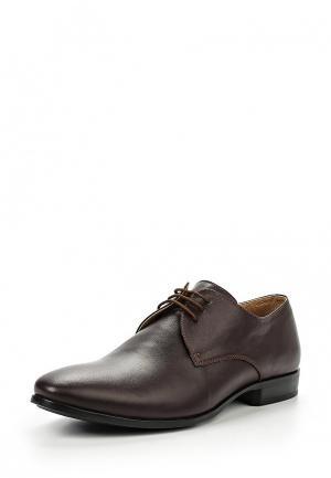 Туфли Nord. Цвет: коричневый