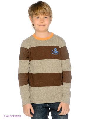 Лонгслив American Outfitters. Цвет: коричневый, бежевый