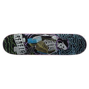 Дека для скейтборда  Skeleton 31.75 x 8.1 (20.6 см) Rebels. Цвет: мультиколор