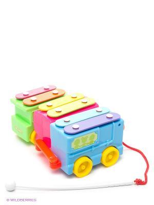 Каталка-металлофон на веревочке VELD-CO. Цвет: голубой, розовый, зеленый