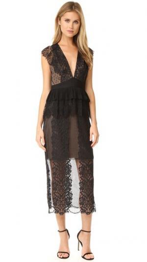 Кружевное платье Affair Three Floor. Цвет: черный/телесный