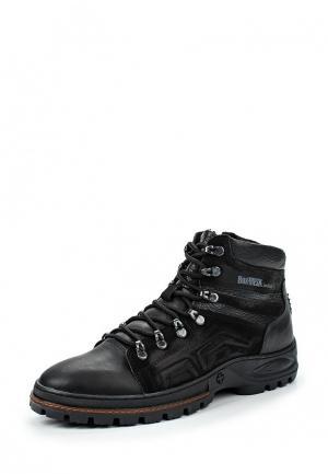 Ботинки трекинговые Calipso. Цвет: черный