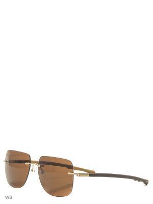 Солнцезащитные очки CX 815 GD CEO-V. Цвет: коричневый, хаки
