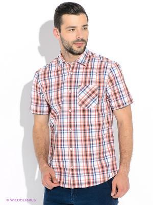 Рубашка S.OLIVER. Цвет: оранжевый, белый, синий