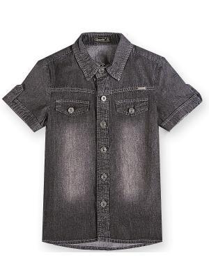 Рубашка Pinetti. Цвет: черный