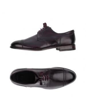 Обувь на шнурках ZENOBI. Цвет: фиолетовый