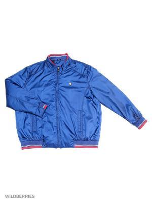 Куртка IFC. Цвет: синий