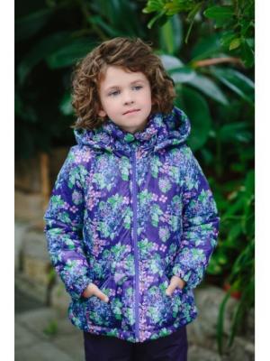 Куртка Варя принт DUWALI. Цвет: темно-фиолетовый