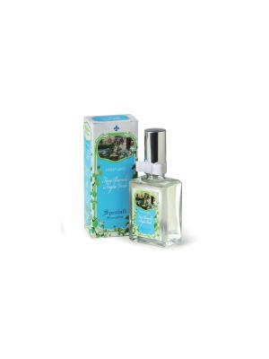 Духи Белые цветы и зеленые листья DERBE. Цвет: голубой