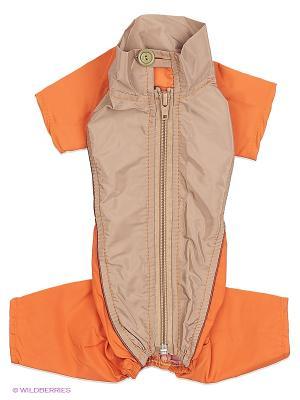 Дождевик холодный (Той-терьер), мальчик ТУЗИК. Цвет: оранжевый