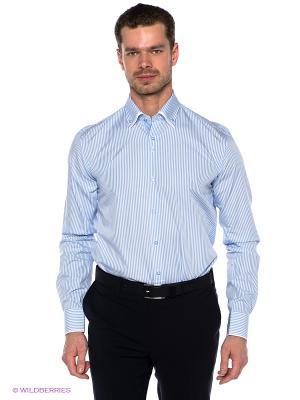 Рубашка GroStyle. Цвет: голубой, белый