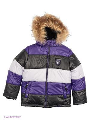 Куртка DONILO. Цвет: фиолетовый