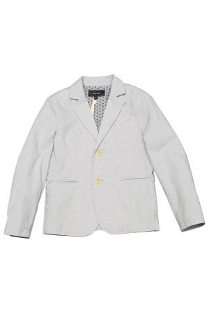 Пиджак Silvian Heach. Цвет: серый