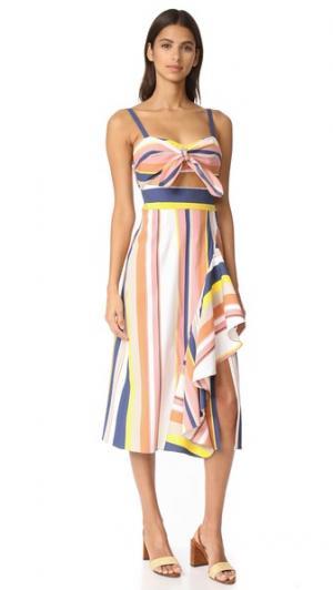 Платье в полоску Alibi Claire Tanya Taylor. Цвет: ржавый мульти
