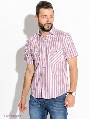 Рубашка Westrenger. Цвет: розовый, белый, синий