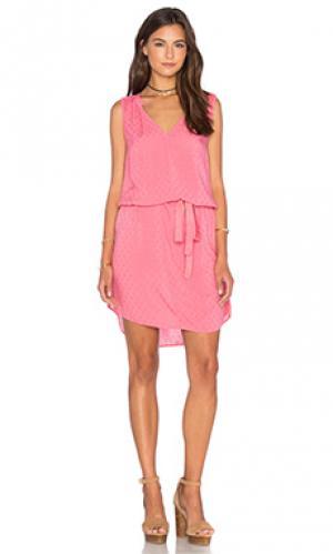 Платье mirasol Velvet by Graham & Spencer. Цвет: розовый