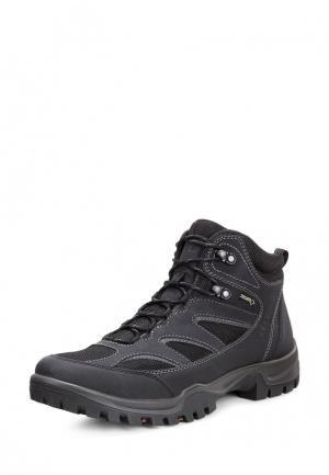 Ботинки XPEDITION III ECCO. Цвет: черный