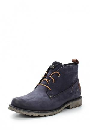 Ботинки Giatoma Niccoli. Цвет: синий
