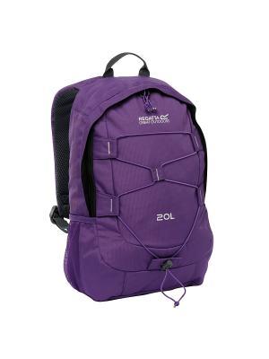 Рюкзак Survivor II 20L REGATTA. Цвет: фиолетовый