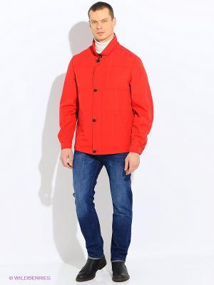Куртки ALEX Maritta. Цвет: красный