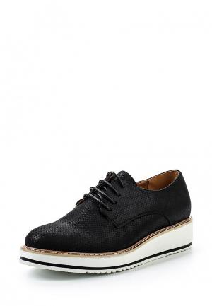 Ботинки Clowse. Цвет: черный