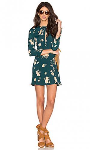 Платье hendrix Privacy Please. Цвет: зеленый