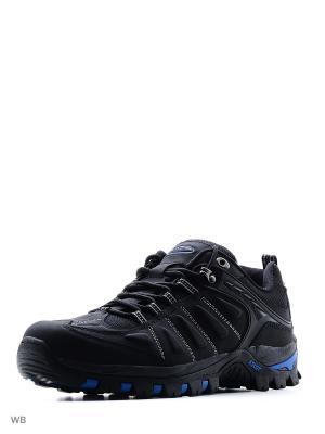 Кроссовки Ascot. Цвет: черный, голубой