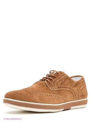 Ботинки GREYDER. Цвет: светло-коричневый