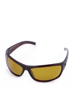 Солнцезащитные очки Legna. Цвет: темно-коричневый, желтый