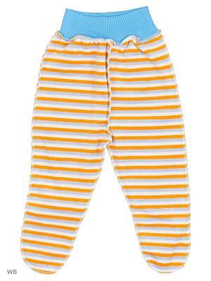 Ползунки Babycollection. Цвет: голубой, оранжевый