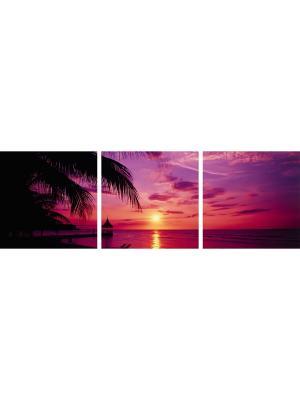Картина IDEA FL2-01/3 Postermarket. Цвет: темно-фиолетовый