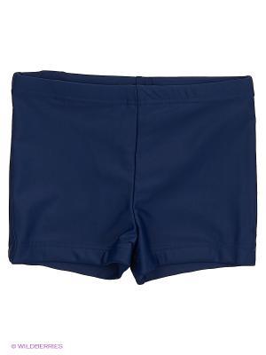 Плавки-шорты Sport Vision. Цвет: темно-синий