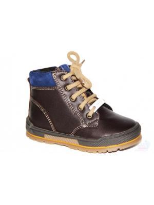 Ботинки Bartek. Цвет: коричневый, голубой