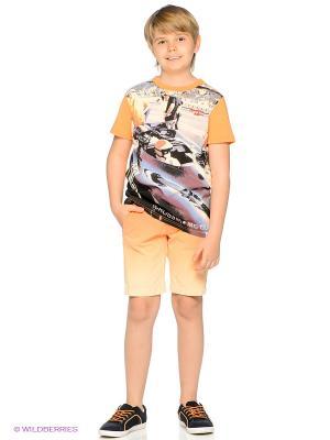 Шорты American Outfitters. Цвет: оранжевый