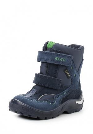 Ботинки SNOWRIDE ECCO. Цвет: синий