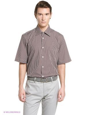 Рубашка Conti Uomo. Цвет: коричневый