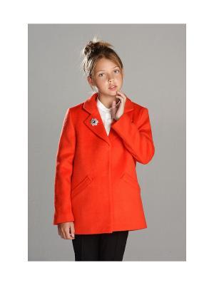 Укороченное пальто MORU. Цвет: оранжевый
