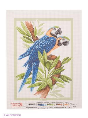 Рисунок на канве Сине-желтый Ара Матренин Посад. Цвет: зеленый, коричневый, голубой, синий