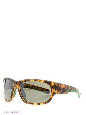 Солнцезащитные очки MS 01-326 50P Mario Rossi. Цвет: коричневый