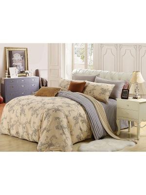Комплект постельного белья, Аурелия, 1.5 спальный KAZANOV.A.. Цвет: бежевый