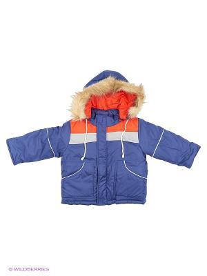 Куртка Babycollection. Цвет: синий, красный